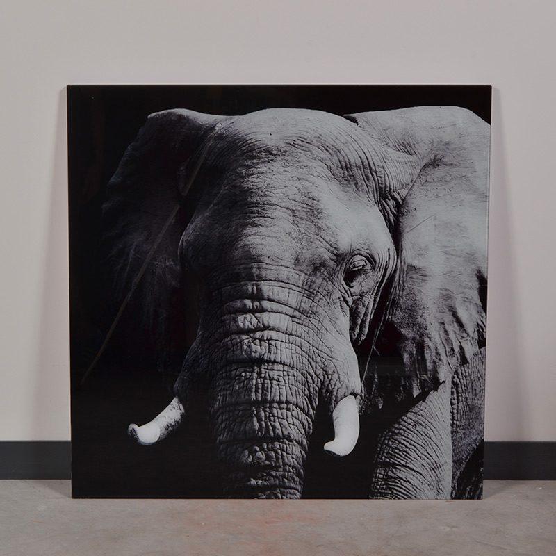 tableau animal en verre éléphant