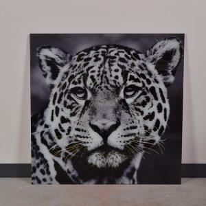 tableau animal en verre leopard