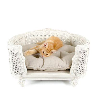Canapé style ancien pour chien et chat