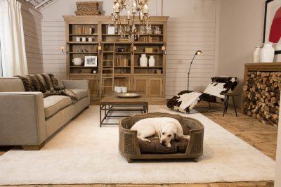 Grand panier pour chien et chat