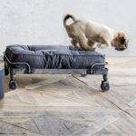 panier-design-pour-chien-lord-lou