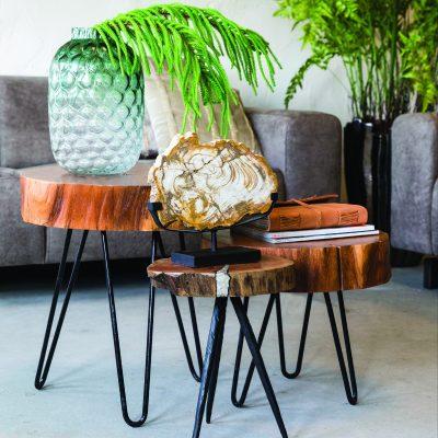 Table d'appoint en rondin de bois