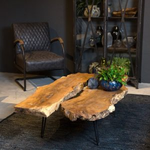 Table basse en bois brut