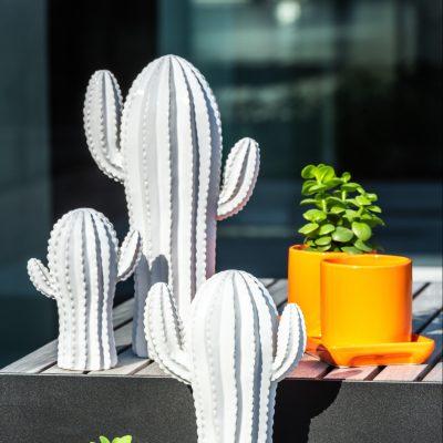 Cactus décoratif en résine