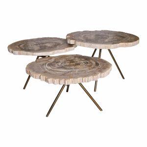 lot-3-tables-basses-bois-petrifie-decorelie